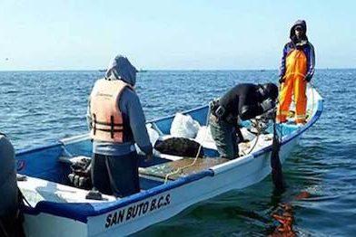 Pescadores furtivos al acecho en la Pacífico Norte